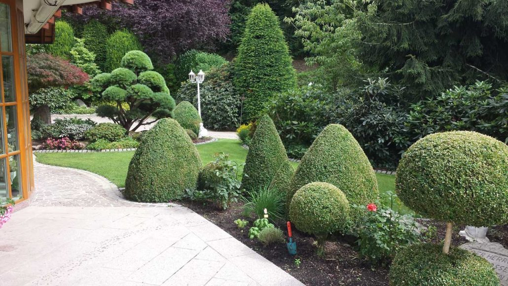 Evergreen Gartenbau gartengestaltung evergreen garden ihr garten profi